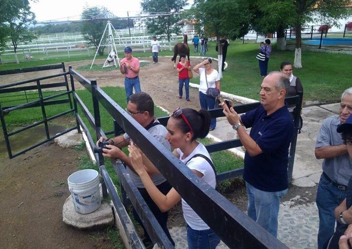 Visitas rancho los tres potrillos
