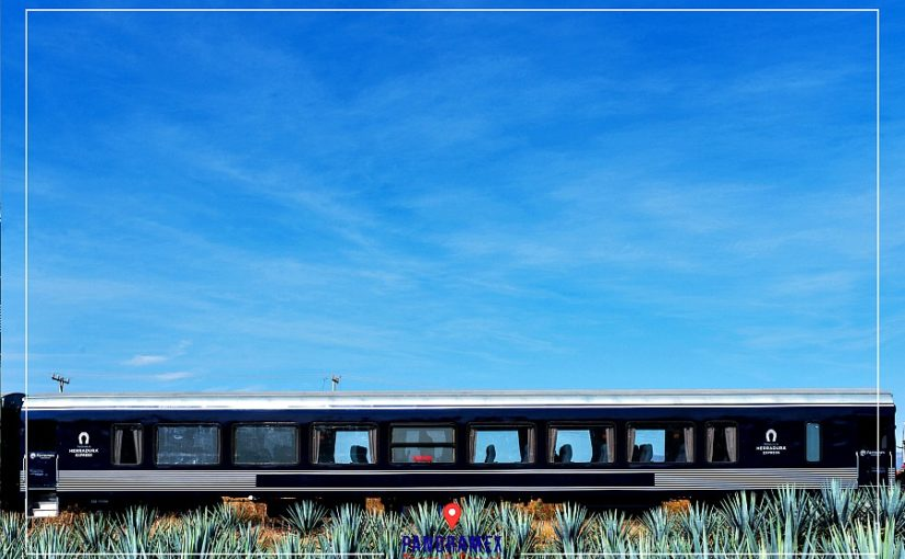 Tequila Herradura Express Train